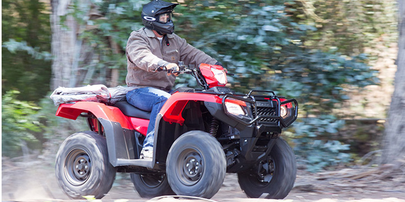 2019 HONDA FourTrax Foreman Rubicon 4x4 Automatic DCT